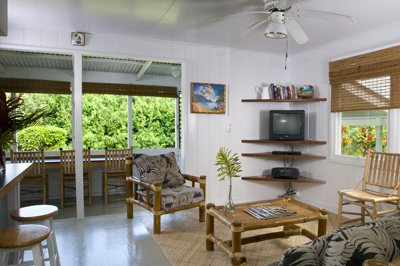 Hanalei Dolphin Cottage IV