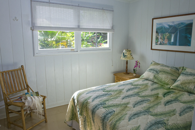 Hanalei Dolphin Cottage V